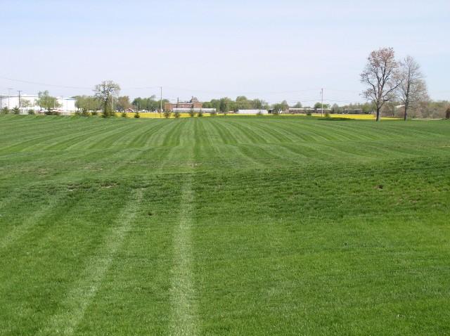 long stripes.jpg
