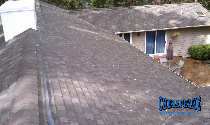 Maryland Roof Cleaners Salisbury MD.jpg