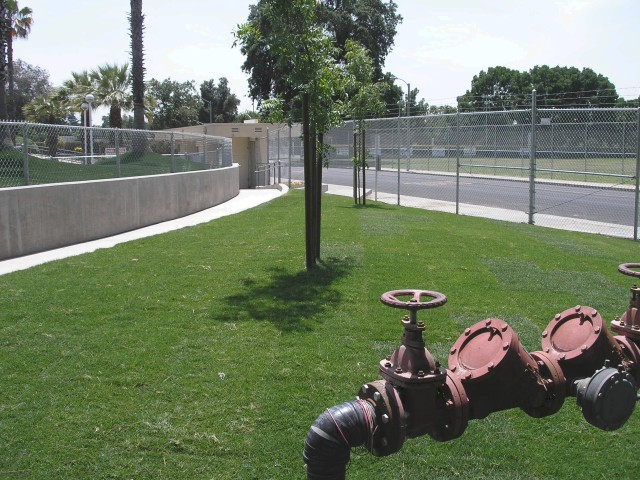MK Bowl West End Landscaping IV-03.jpg