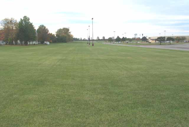 Mowed Yards-Mall - Long View-Straight Lines.jpg