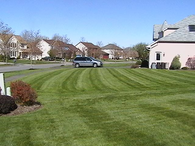 mower pixs 011 (Small).JPG