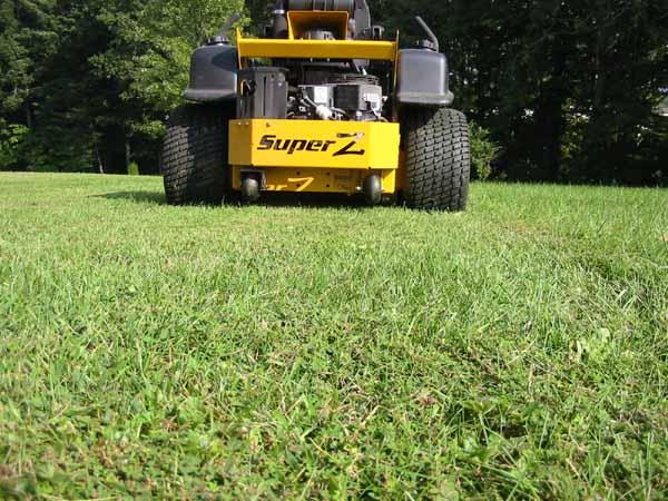 Mowing II 007.jpg