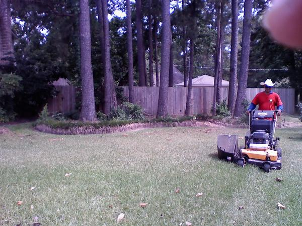 Mowing in action 2.jpg