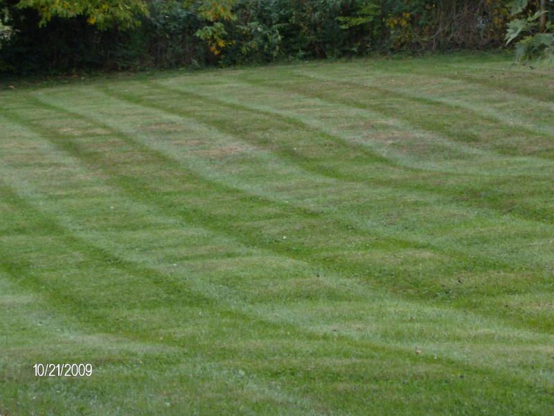 Mowing Pictures 003.jpg