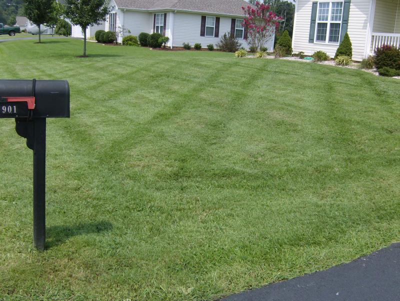 Mowing Pictures 009.jpg
