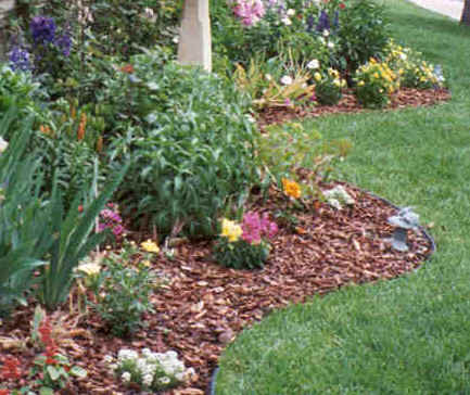 Superior Mulch Bed Pic