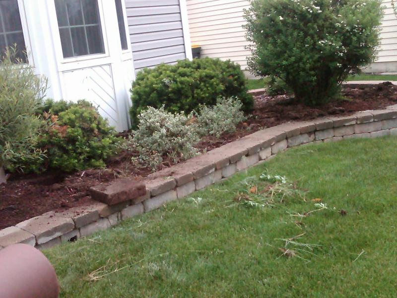 mulch before.jpg