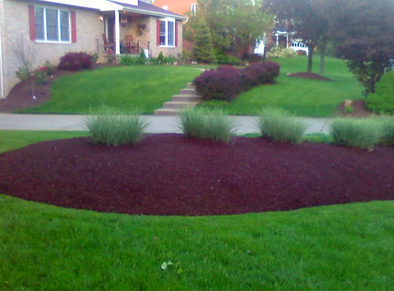 mulch job 4.jpg