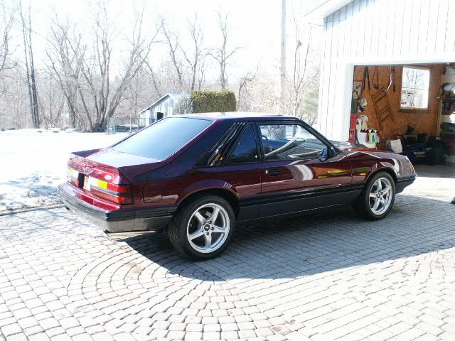 mustang for auto trader.jpg