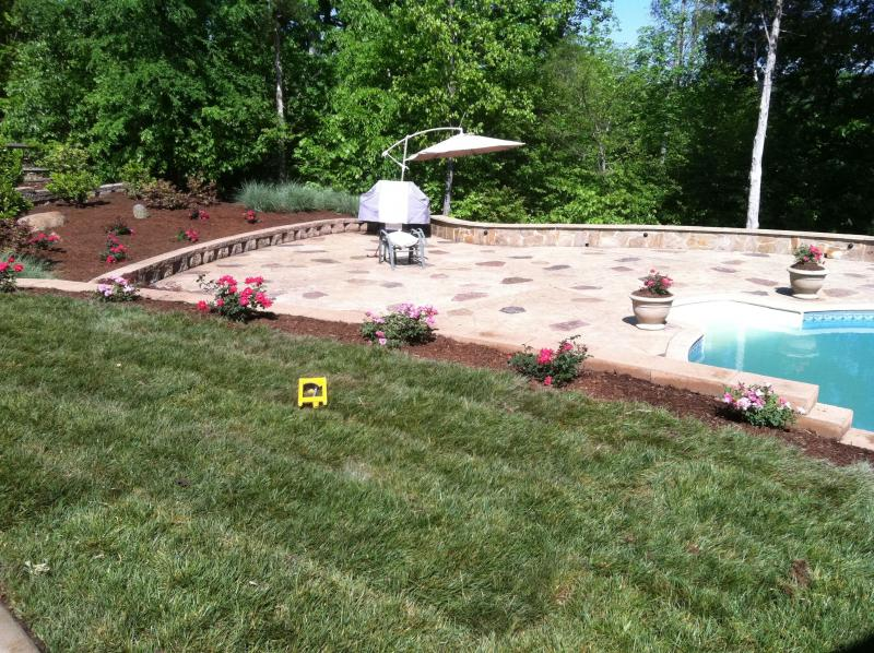 New Sod and Flowers.jpg