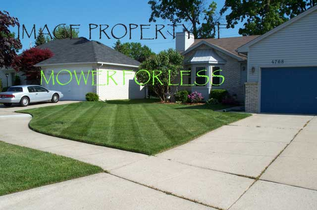Our-Lawns-008.jpg