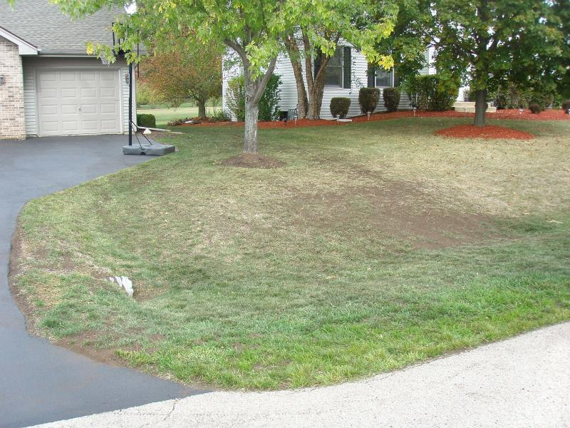 P5. Spread Grass Seed and Organic Compost through out yard (small).jpg
