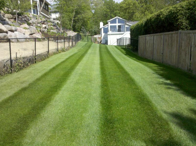 Pahl's Lawn Care 016.jpg