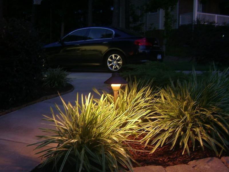 pathlight.jpg