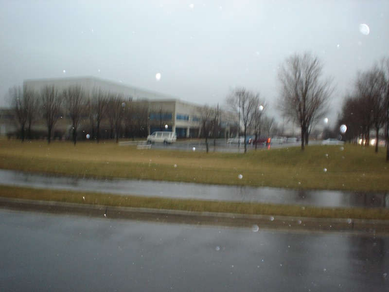 Picture 004.jpg