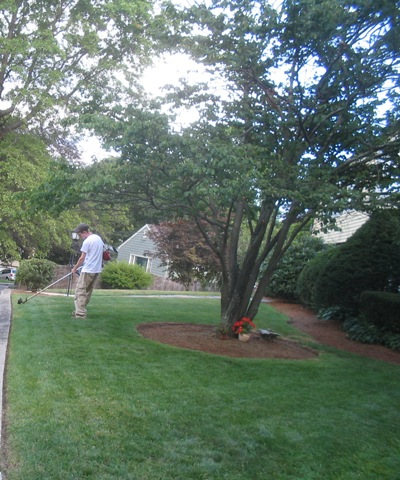 Lawn maintenance job lawnsite for Garden maintenance jobs