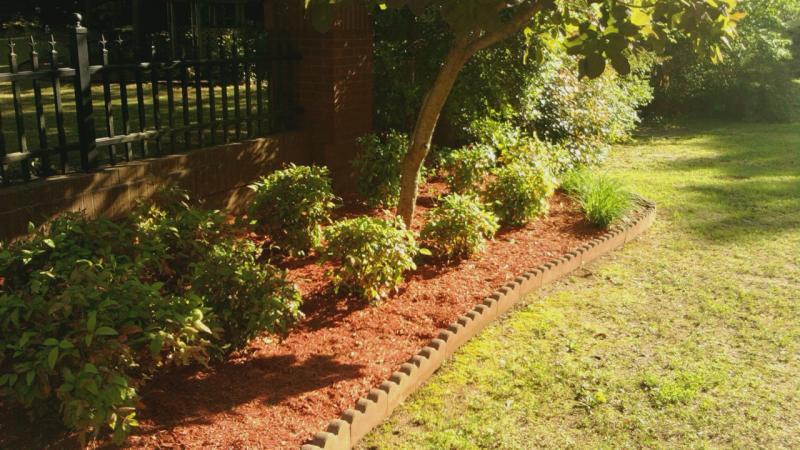 red mulch(22).jpg