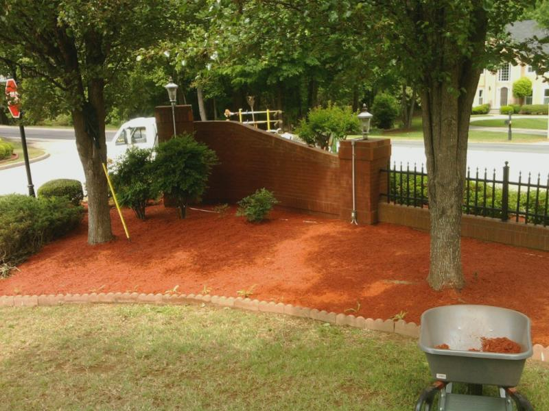 red mulch(33).jpg