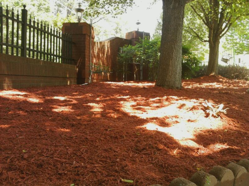 red mulch(37).jpg