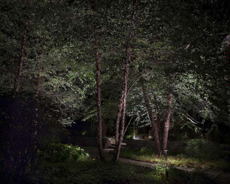 Richmond farmhouse_tree_uplighting_pathway_steps_night.jpg