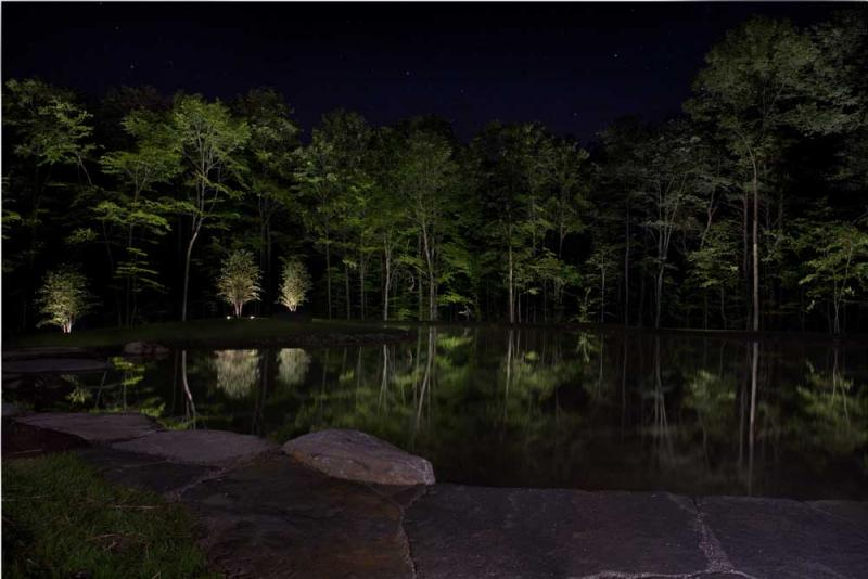 Richmond pond_night_stroll_reflection_night.jpg