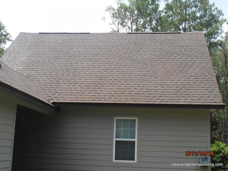 Roof Cleaner The Woodlands.jpg