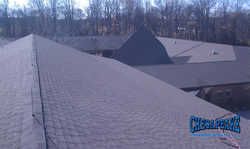 Roof Cleaners Dover Delaware.jpg
