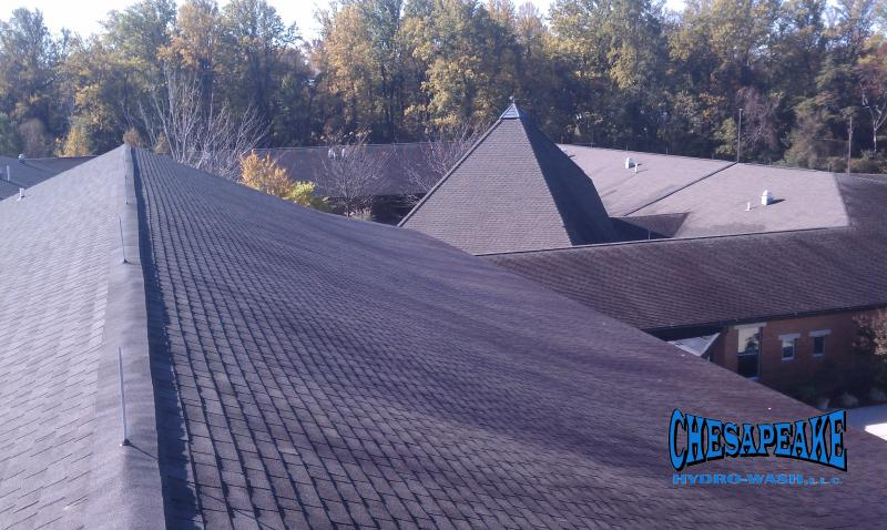 Roof Cleaning Dover DE.jpg