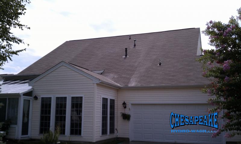 Roof Cleaning Easton MD 21601.jpg