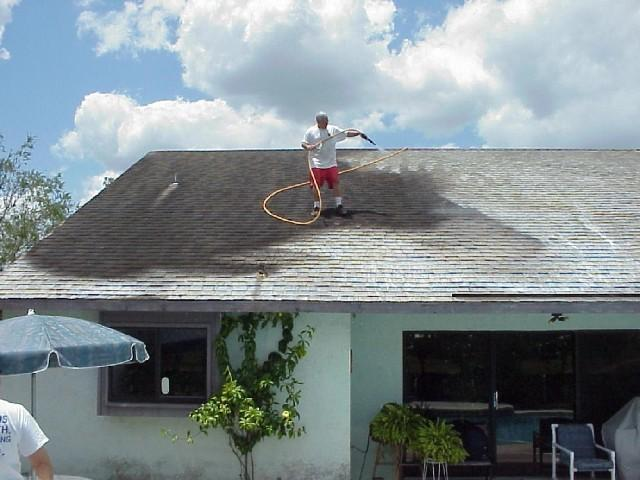 roof cleaning picture.jpg