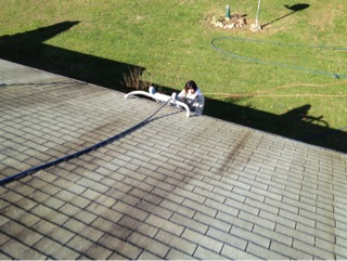 Roof Cleaning Willow Hill, PA 17271 006.jpg