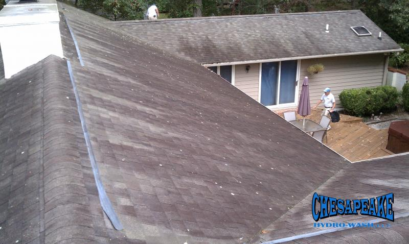 Salisbury Maryland Roof Cleaner.jpg