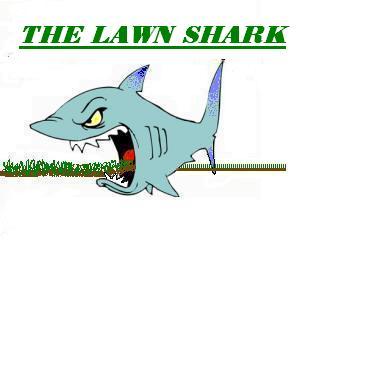 sharklogo2.jpg