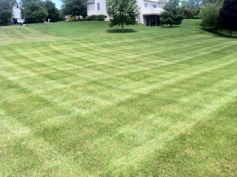 stripes 57.jpg