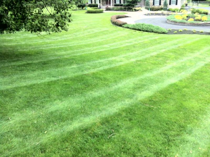 stripes 70.jpg