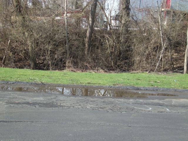 studio puddle before drain.JPG