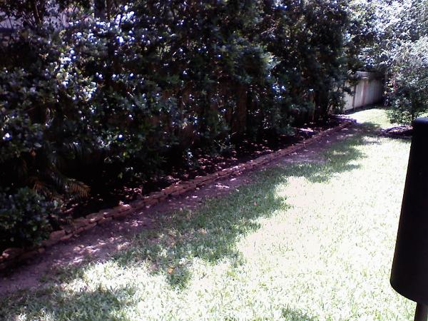 Tom Marlow landscaping 4.jpg