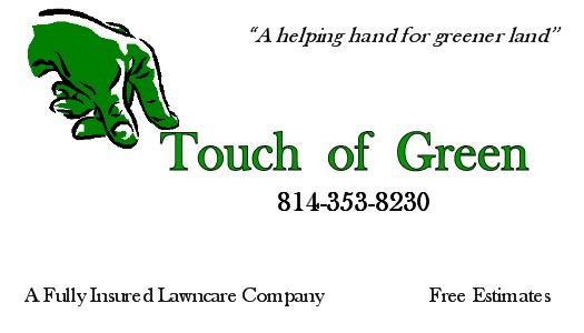 touch of green business cards.jpg