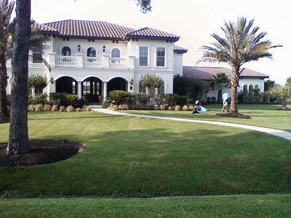 tracy marks lawn pic 1.jpg
