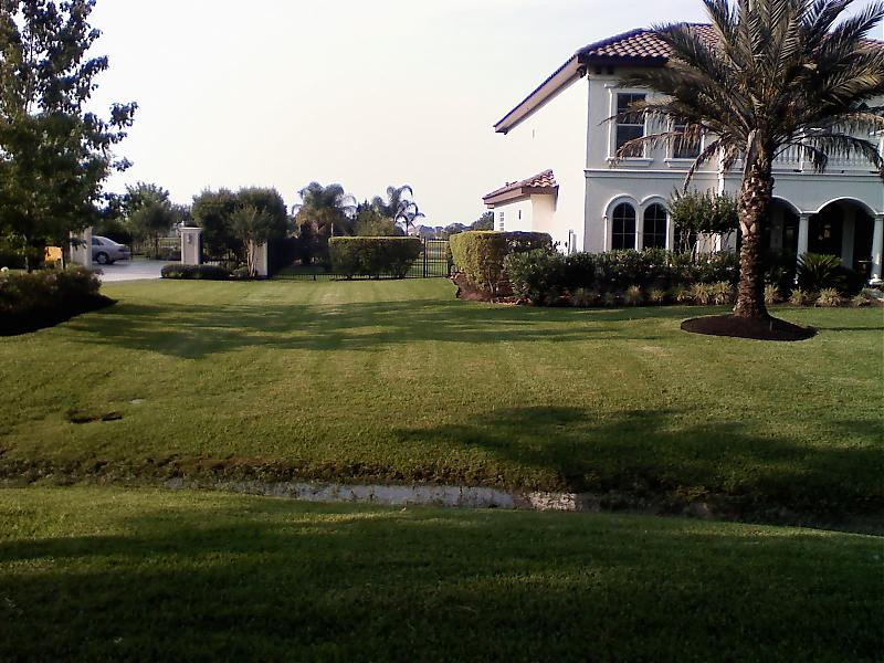 tracy marks lawn pic 3.jpg