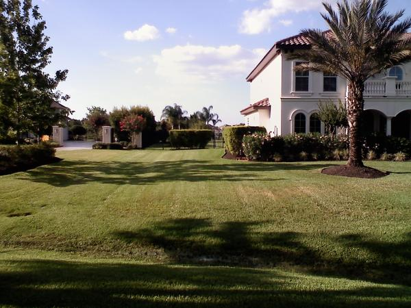 Tracy Marks Lawn Pic 5.jpg