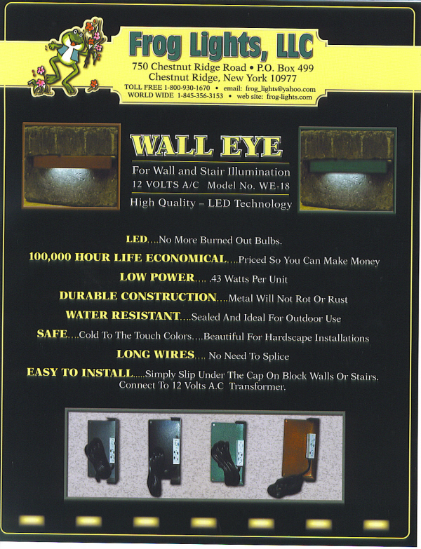 Wall Eye   Flyer.jpg