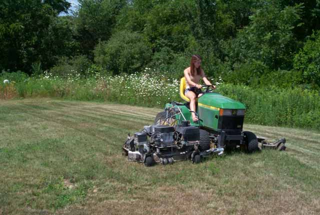 wide mower-back yard-dry grass.jpg