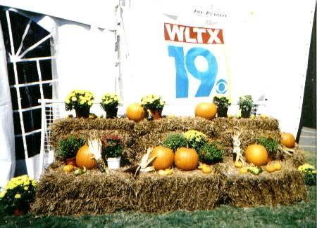 wltx at the fair.jpg